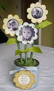 Joannes flowers