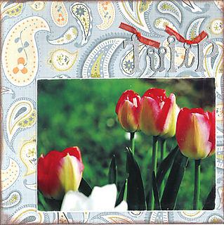 06 tulip