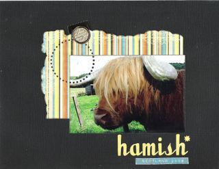 10 hamish