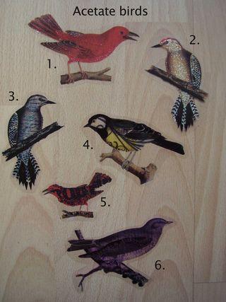 Acetate birds