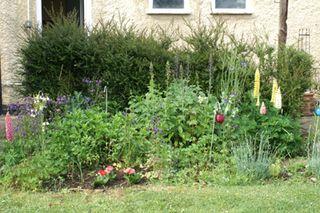 31 05 garden (5)