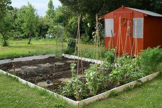 31 05 garden (1)
