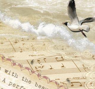 Joy close bird