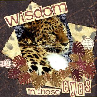Wisdom scan all