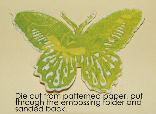 Butterflies16