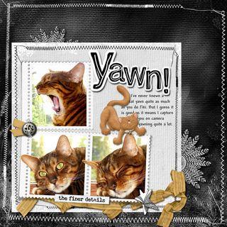 Yawn (2)