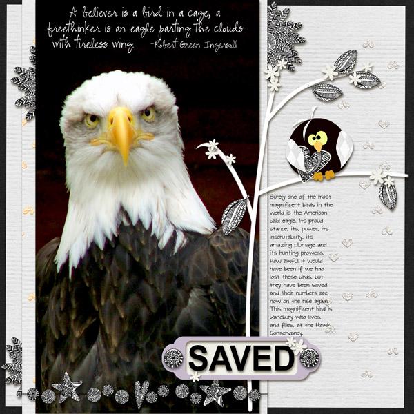 Eagle-vol1-v-1