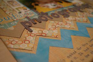 Budding photographer LO close up of chevrons web