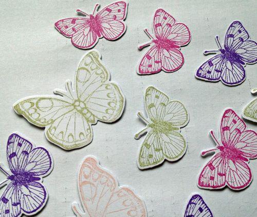 Stamped-butterflies