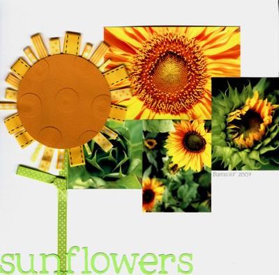 Sunflowers_resized
